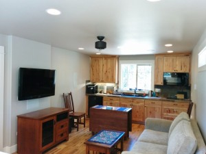 Garage Apartment living room